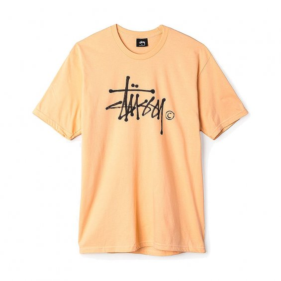 Stussy Water stock Tee, Peach
